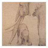 Elefantes en el Papel Tres Giclee Print by Carolina Luzon