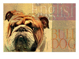 English Bulldog Giclee Print by Wendy Presseisen