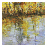 Reflections of a Changing Season Giclee Print by Tim Howe