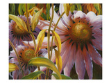 Prairie Posies Prints by Elizabeth Horning