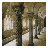 Interior Columns Prints by John Douglas