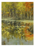 Nature's Mirror Giclee Print by Tim Howe