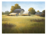 Country Meadow I Print by David Marty