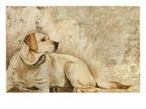 A Dog's Story 3 Giclee Print by Elizabeth Hope