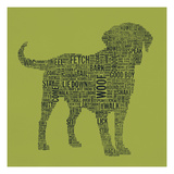Dog Type 1D Giclee Print by Stella Bradley