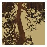 Ponderosa Pine Giclee Print by  jefdesigns