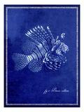 Marine Collection D Papier Photo par  GI ArtLab