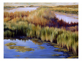 Wetlands Art by Sarah Waldron
