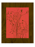 Wenge Wood Floral 2-Magenta Giclee Print by Kathleen McCarty