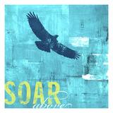 Soar Above Giclee Print by CJ Elliott