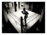 Shadow Boxer 4 Photographic Print by TM Photography