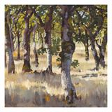 Woodlands Shadow Giclee Print by Sarah Waldron