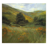 Meadow in Bloom Prints by Sarah Waldron
