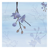 Zen Blossoms 4 Giclee Print by Kate Knight