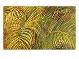 Tropical Light Giclee Print by Darrell Hill