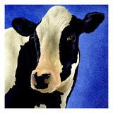 Blue Moo Moo Giclee Print by Will Bullas
