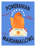 Pomeranian Posters by Ken Bailey