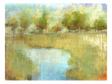 Guild Pond 2 Giclee Print by Maeve Harris