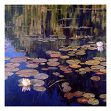 Lilies Prints by Sarah Waldron