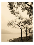 Dawn Forever I Prints by Thea Schrack