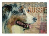 Aussie Prints by Wendy Presseisen