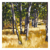 Woodlands Bright Prints by Sarah Waldron