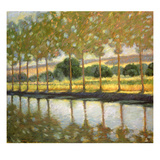 Trees Along a Canal Posters by Sarah Waldron