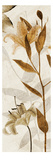 Ambre Antique I Giclee Print by Thea Schrack