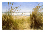 Dune Grass 3 Photographic Print by Thea Schrack