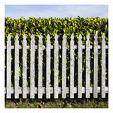Willapa Fence Photographic Print by Paul Edmondson