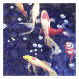 Koi 2 Photographic Print by Thea Schrack