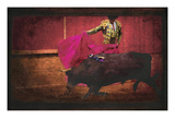 San Miguel, Bullfight No.4 Photographic Print by Doug Landreth