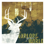 Explore Your World 4 Giclee Print by CJ Elliott