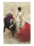 San Miguel, Bullfight No.2 Fotografie-Druck von Doug Landreth