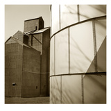 Grain Elevators Photographic Print by TM Photography