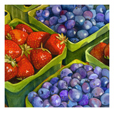 Basket o' Berries Giclee Print by Terri Hill