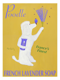New Poodle Lavender Giclee Print by Ken Bailey