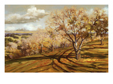 The Walnut Orchard Giclee Print by Sarah Waldron