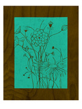 Wenge Wood Floral 2-Teal Giclee Print by Kathleen McCarty