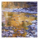 Rocks & Reflection Print by Sarah Waldron