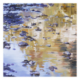 River Rocks & Reflections Giclee Print by Sarah Waldron