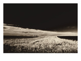 Field & Farm I Photographic Print by  Lependorf-Shire