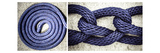 Blue Rope Photographic Print by Pamela Viola