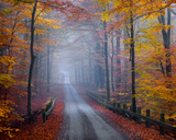 Misty Road Prints by Hans Strand