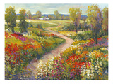 Morning Walk II Stampa giclée premium di Tim O'toole