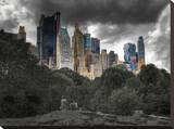 Central Park View Stretched Canvas Print by Dale MacMillan