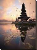 Water Temple, Bedugul Bali Stretched Canvas Print by Byron Yu