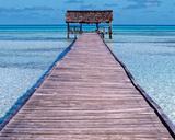 Seychelles I Kunst af Nicolas Bialylew