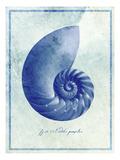 Nautilus Shell B Impressão fotográfica por  GI ArtLab