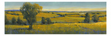 Picturesque Scene I Premium Giclee Print by Tim O'toole